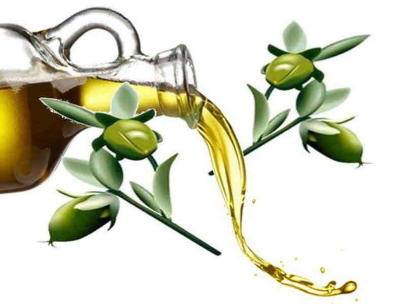 Αποτέλεσμα εικόνας για jojoba oil images